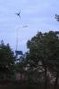 Энергонезависимое уличное освещение в Колке